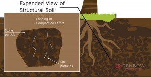 structural-soil-expanded-view-300x154