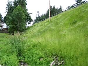 Terraseeded Ecoblanket-Fraser Hwy II