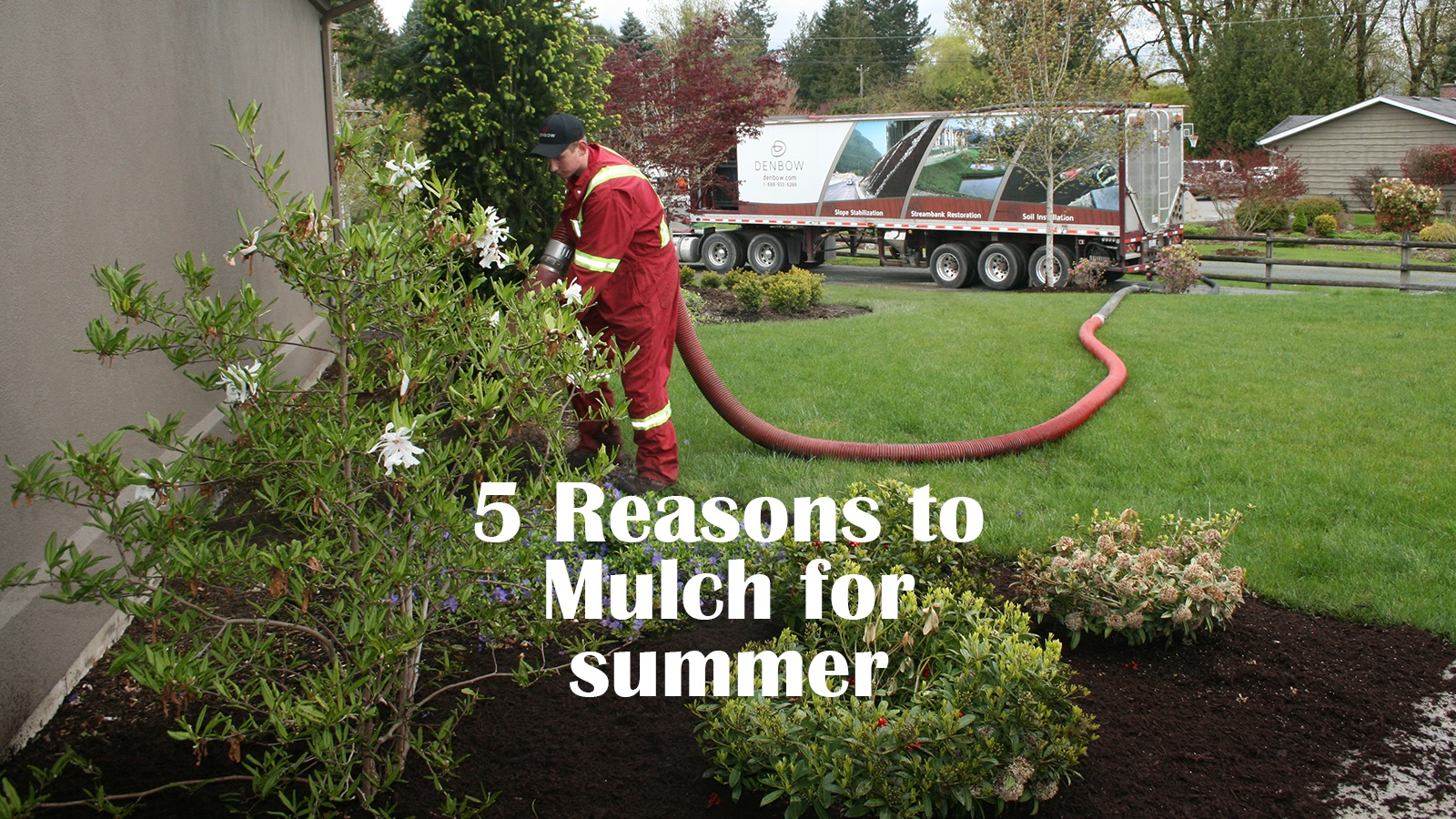5 reasons to mulch for summer