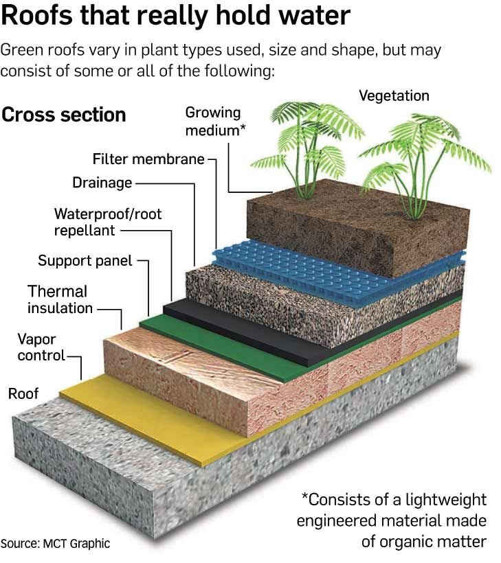 25-trending-green-roofs-ideas-on-pinterest-living-roofs-system-architecture-diagram-and-roo-729-x-820