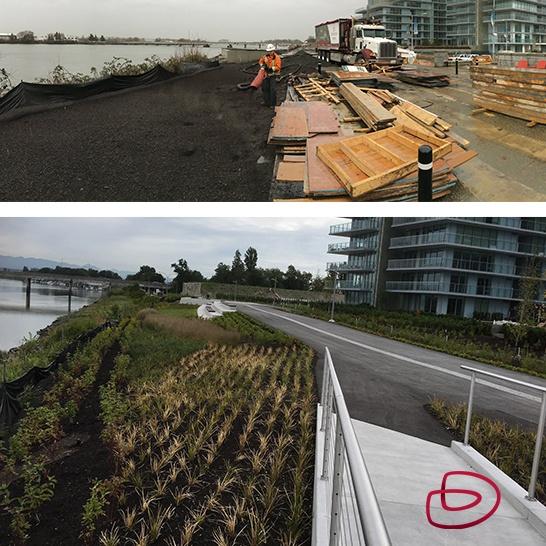 Richmond Dike project update IG