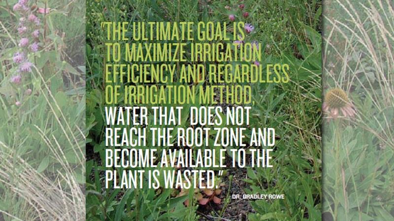 greenroof irrigation