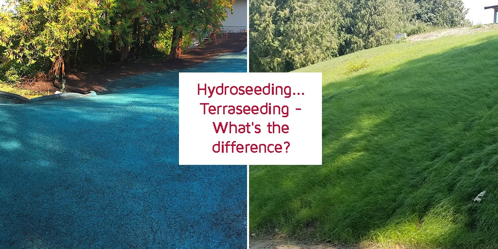 hydroseeding terraseeding whats the difference